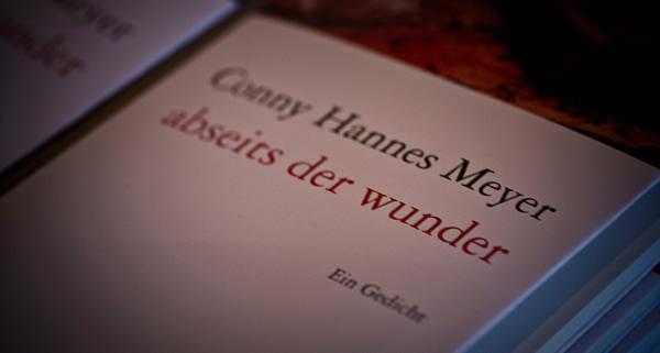 Conny Hannes Meyer - Werke